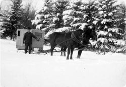 Mr. Wood and Horse Drawn Sled