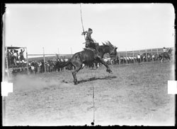 Yucca Rodeo, 1927