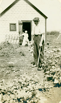 man cultivating garden