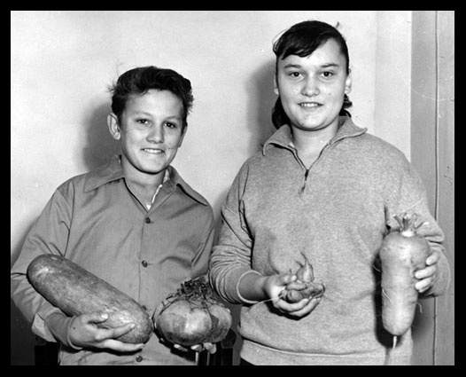 Jack and Kathleen Werner display giant vegetables