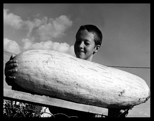 Leon Just 11 years old with giant Banana Squash