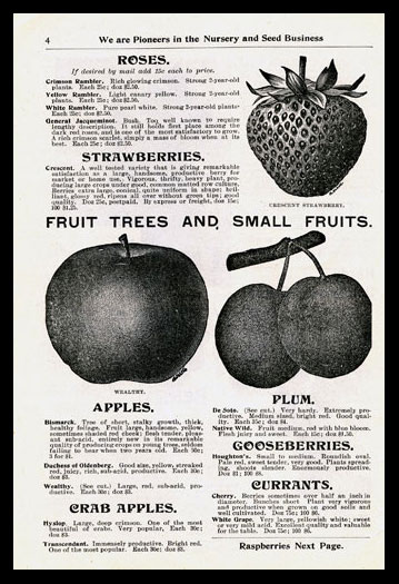 Fruit Trees and Small Fruits