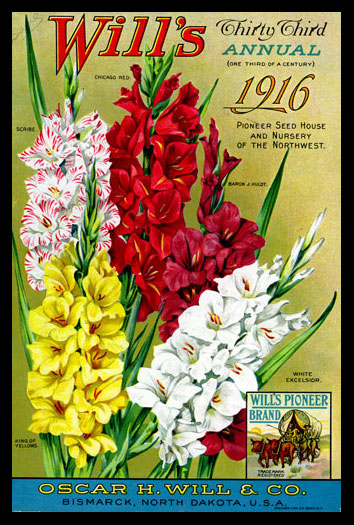 1916 Will's Seed Company Catalog Cover