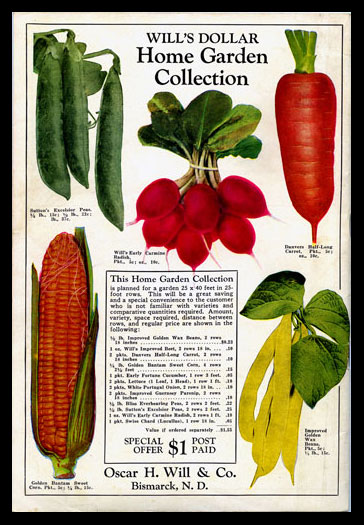 1930 Will's Seed Company Catalog Back Cover