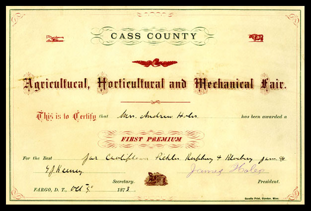 Cass County Agricultrual Fair Award for Mrs. A. Holes, 1873