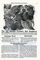 Will Seed Company Catalog 1903 p5