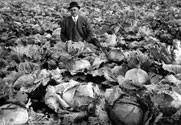 Deputy Warden Peter Reid with Cabbage Garden
