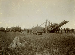 threshing on Dwight farm