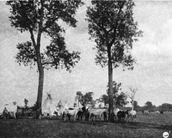 portion of camp at Fort Berthold Indian Fair 1914
